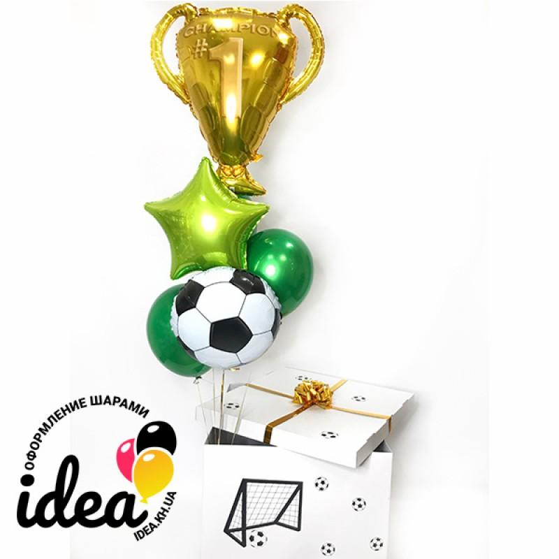 Коробка с сюрпризом Футбольный Чемпион №1