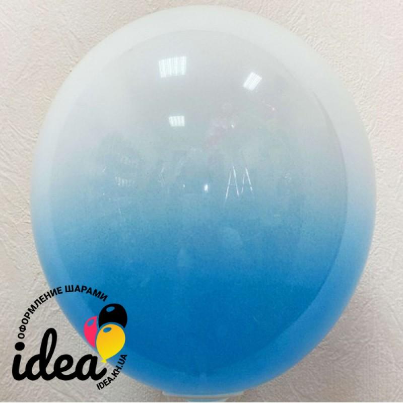 Шар с гелием Омбре сине-белый , обработан HiFloat