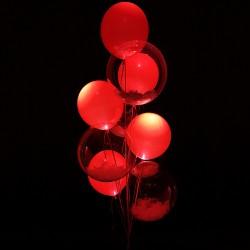 Букет гелиевых шаров Светящийся восторг