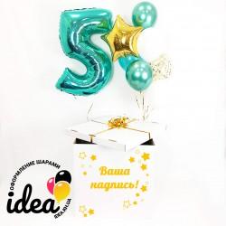 Коробка c шарами День Рождение