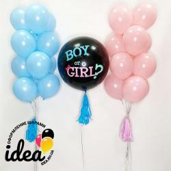 Шар Boy or Girl? и розово-голубые шары