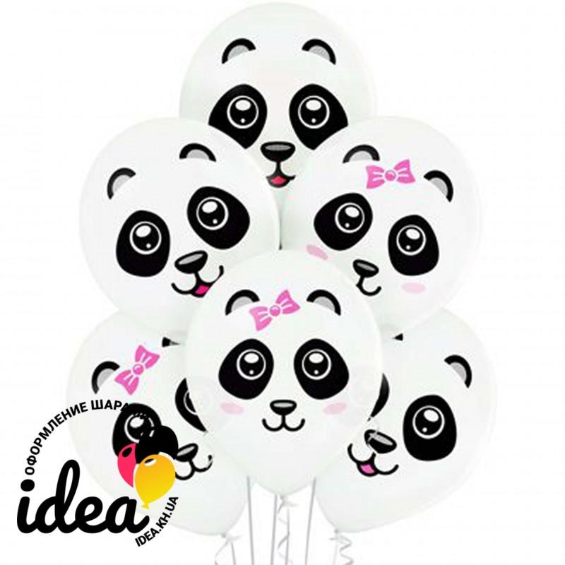Шар с гелием, с рис милые панды, обработан HiFloat (1шт)
